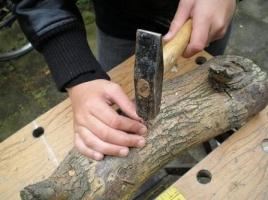 eetbaar hout (1)