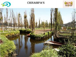 a_chinampas