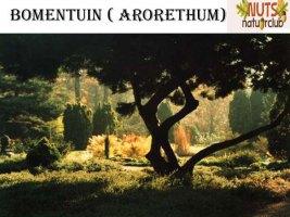 arborethum