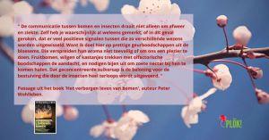 citaat-boek-Peter-Wohlleben-002