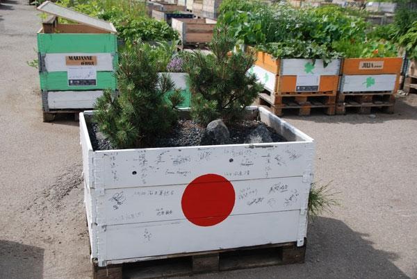 urban farming (9)