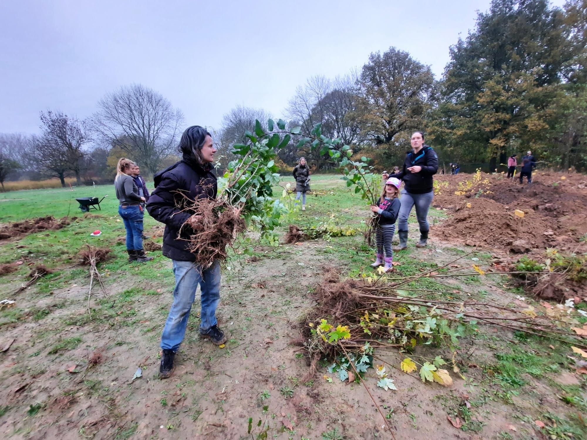 aanplant 22000 bomen en struiken in Sittard van start