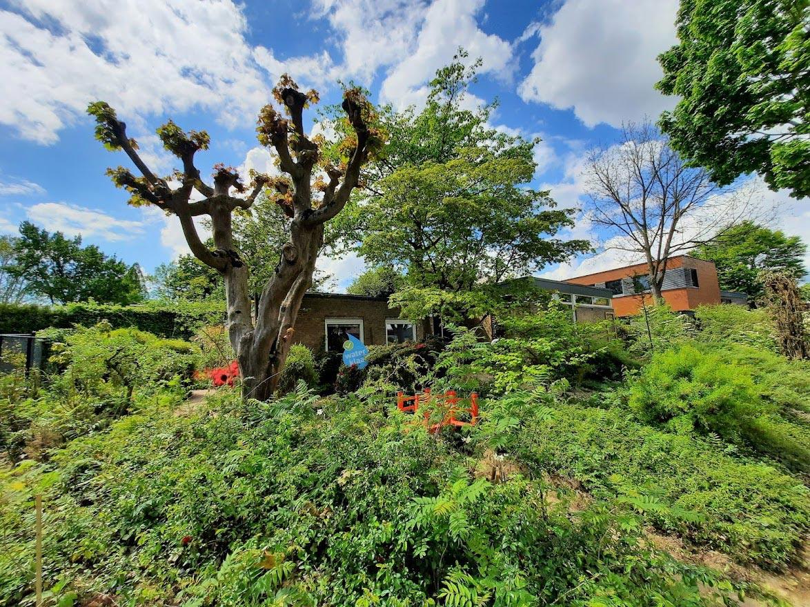 tuinreservaten helpen de biodiversiteit verhogen in de stad.