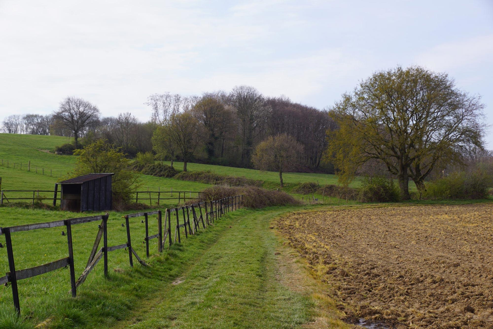 eetbaar landschap