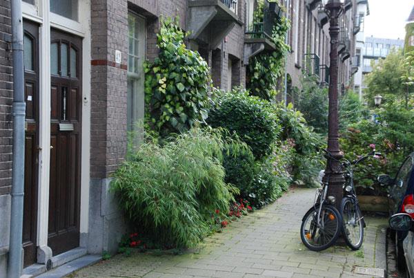 creëer je eigen geveltuin of stads-voortuin in Amsterdam.