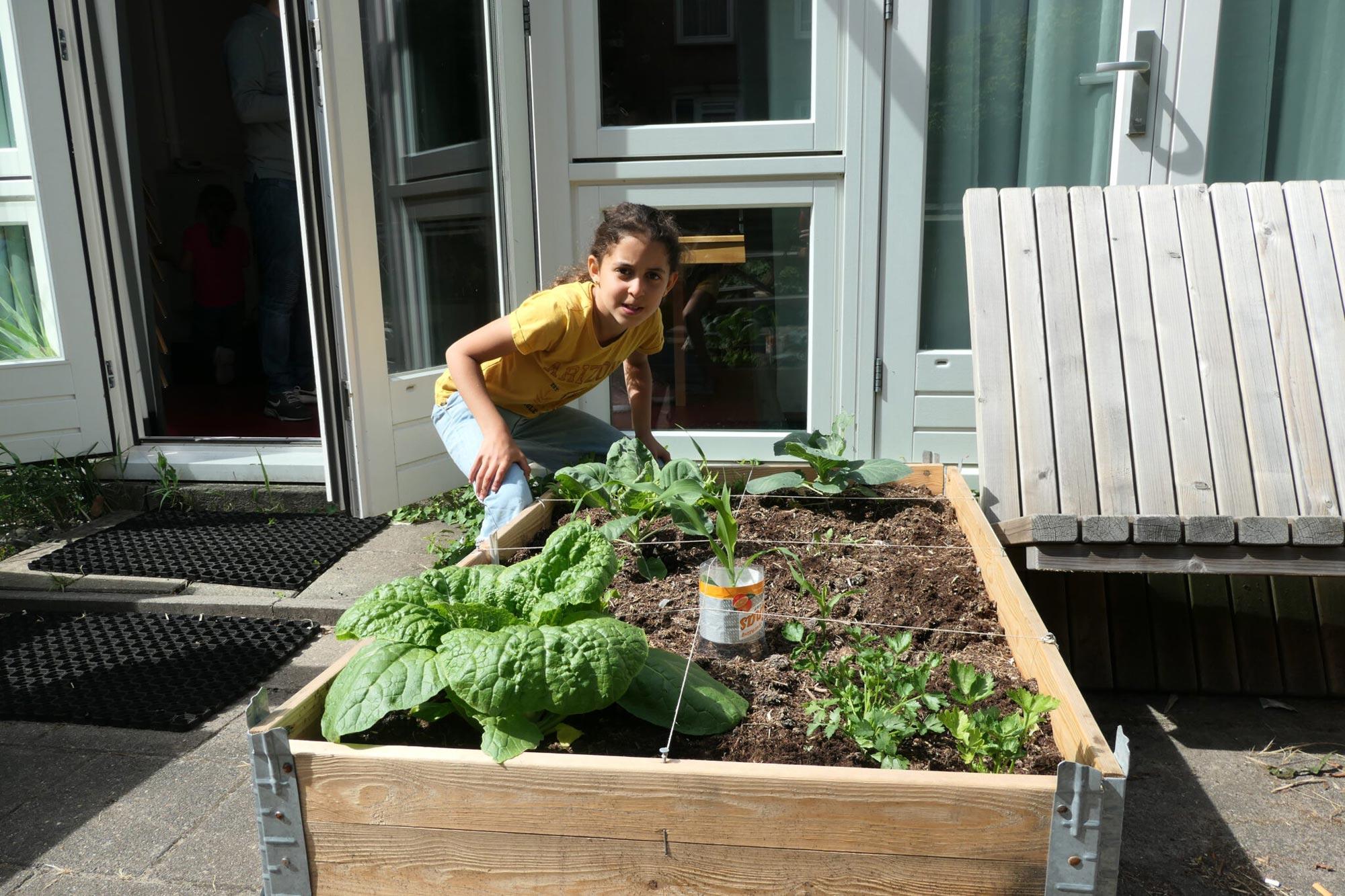 je eigen groente kweken is niet moeilijk!