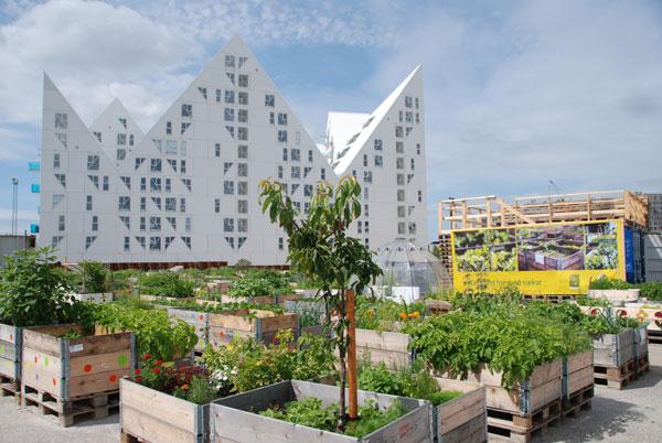 Groen en Blauw voor een aantrekkelijke, gezonde en duurzame buurt